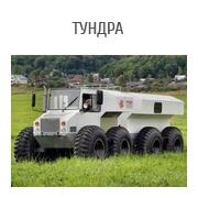 022_Tundra_180x180